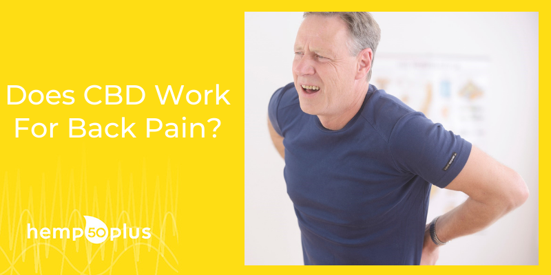 Does CBD Work For Back Pain? Everything About CBD And Back Pain